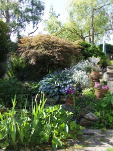 Garden maintained by Simply Garden Maintenance